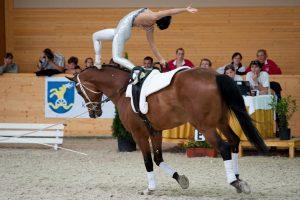 Der Pferdesport bietet allerhand mentale Herausforderungen © Shutterstock | Ventura