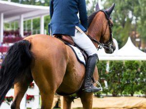 In der Ruhe liegt die Kraft - auch im Sattel eines Pferdes © Marco Govel