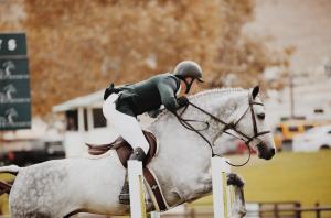 Geht es im Pferdesport nicht immer um unvergleichbare Individuen? © pexels