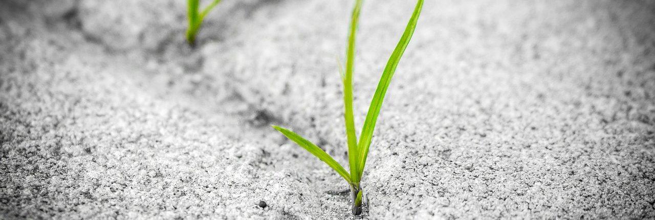 Resilienz bedeutet, herausfordernden Situationen die Stirn bieten zu können und daraus auch Nutzen zu ziehen! © tambira photography